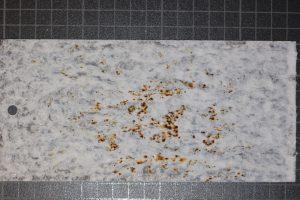 Acier zingué 10 µm après 168 heure de corrosion en test NSS