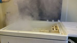 Enceinte de corrosion brouillard salin