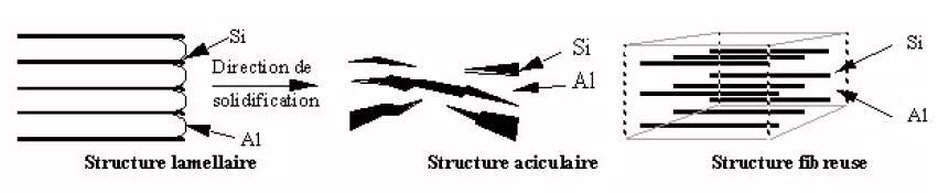 Représentation schématique des formes de silicium.